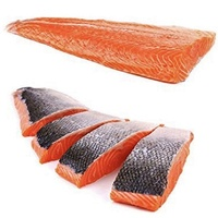 Fish Frozen Salmon Portions Skin on